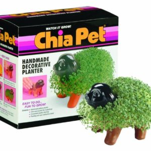 The Amazing Ch-ch-ch-Chia Seed