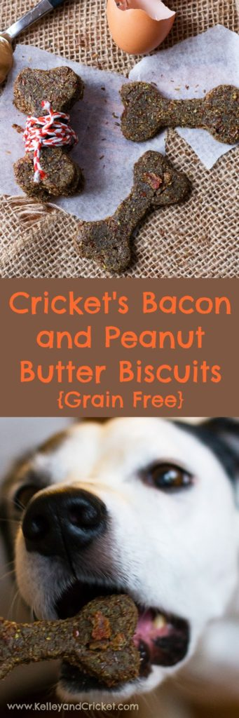 Crickets Bacon and Peanut Butter Biscuits Collage