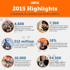 Kelley and Cricket Pledge to Support the ASPCA