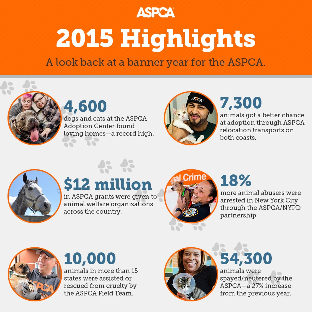 ASPCA 2015-highlights-infographic