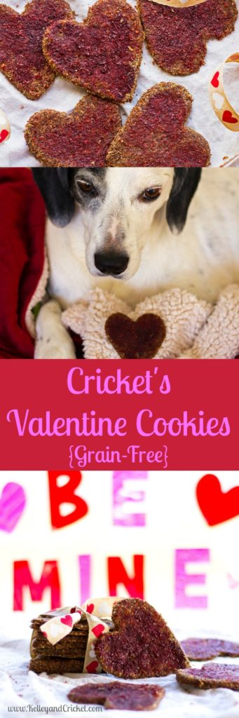 Crickets Valentine Collage
