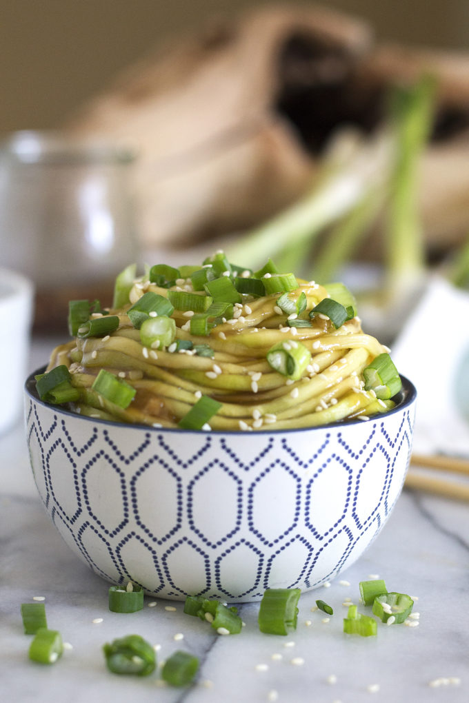 Slurp up these Sticky Ginger Sesame Noodles and use a spoon to lick the bowl clean...That is how amazing this sauce is! Best of all this dish can be made in 5 minutes flat with a handful of simple ingredients. Gluten free, Grain free, Paleo, Vegan.