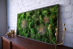 PEACE-PRODUCING MOSS ART